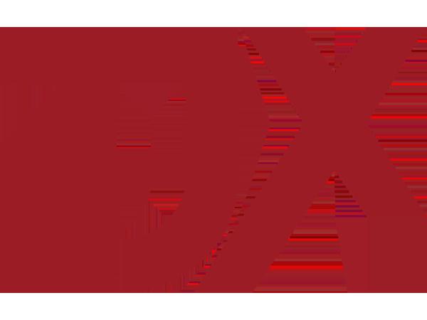 tjx-logo-1